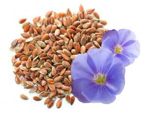 лечение_семенами_льна_leshenie_semenami_lna